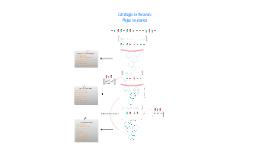 Copy of Flujo de Personas TECHO