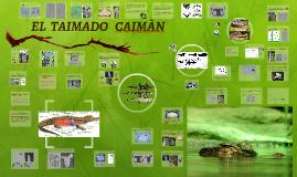 EL  TAIMADO   CAIMAN