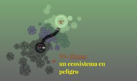 Copy of Río Rímac: un ecosistema en peligro