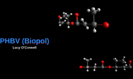 Long Version PHBV (Biopol)
