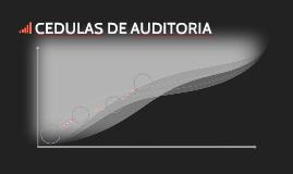 CEDULAS DE AUDITORIA
