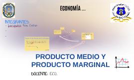 Copy of PRODUCTO MEDIO Y PRODUCTO MARGINAL