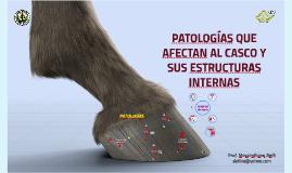 PATOLOGÍAS QUE AFECTAN AL CASCO Y SUS ESTRUCTURAS INTERNAS
