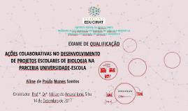 AÇÕES COLABORATIVAS NO DESENVOLVIMENTO DE PROJETOS ESCOLARES
