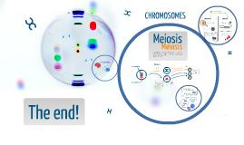 Chromosomes (AS Biology)