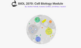 BIOL 2070: Cell Biology Module