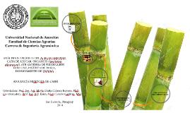 Copy of Universidad Nacional de Asunción