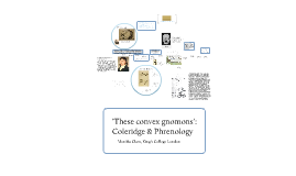 Coleridge and Phrenology