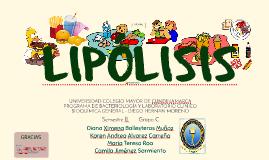 LIPÓLISIS