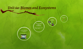 Unit 6a: Biomes and Ecosystems
