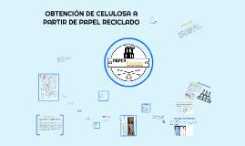 Copy of OBTENCIÓN DE CELULOSA A PARTIR DE PAPEL RECICLADO