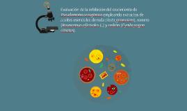 PROYECTO INTEGRADOR III B