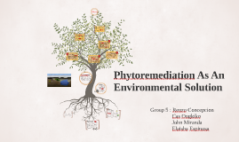 Copy of Phytoremediation As An Environmental Solution