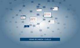 VENAS DE CABEZA Y CUELLO