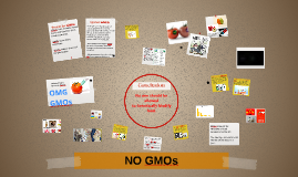 Copy of We should not have Geneticaly Modified Food.