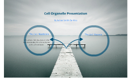 Cell Organelle Presentation:  The Cell Membrane and Vacuole