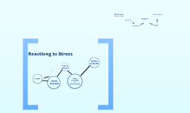 Mindfulness: Stress Reaction vs. Stress Response