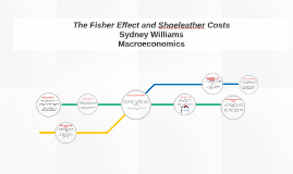 The Fisher Effect and Shoeleather Costs