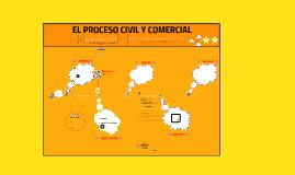 Proceso civil y comercial