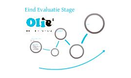 Eindevaluatie Stage Olie Media
