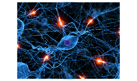 Epilepsia Ideopatica Monogenica