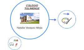 COLEGIO TOLIMENSE