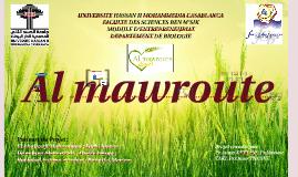 Al mawroute