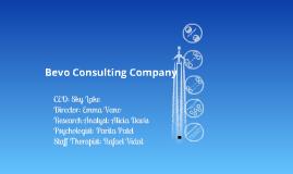 Bevo Consulting Company
