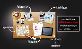Currículum Vítae- Pablo Castro Mota