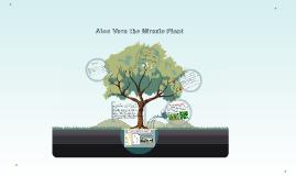 Aloe Vera the Miracle Plant