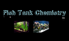Fish Tank Prezi