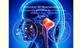 Seminário de Neuroanatomia