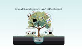 Social Development and Attachment