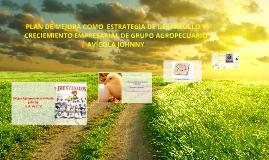 PLAN DE MEJORA MO ESTRATEGIA DE DESARROLLO Y CRECIEMIENTO EM