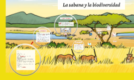 Copy of Bioma : La sabana