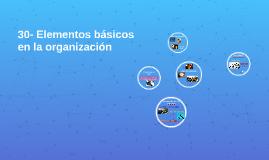 30- Elementos básicos en la organización