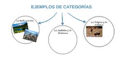 EJEMPLOS DE CATEGORÍAS