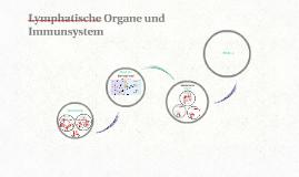Lymphatische Organe und Immunsystem