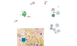 2. Green Key's environmental education (English narration)