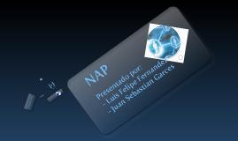 Copy of Exposicion redes