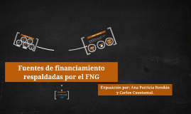 Fuentes de financiamiento respaldadas por el FNG
