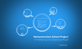 Collaboration in the Demonstration School Project