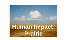 Human Impact: Prairie