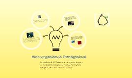Copy of Microorganismos Transgenicos