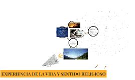 EXPERIENCIA DE LA VIDA Y SENTIDO RELIGIOSO