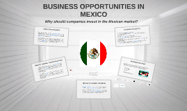 BUSINESS OPPORTUNITIES IN THE MEXICAN MARKET