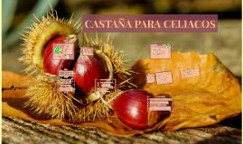 CASTAÑA PARA CELIACOS