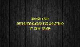 Silver Carp Invasive Species Presentation