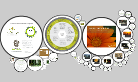 Biomimicry & the Living Building Challenge