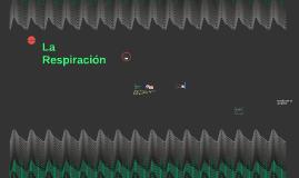 Copy of La Respiracion